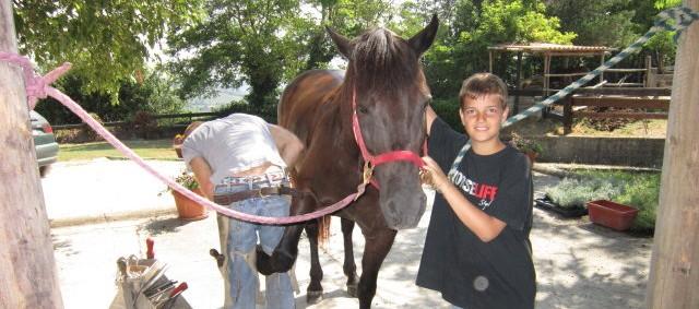 Umani o cavalli, ospitalità per tutti