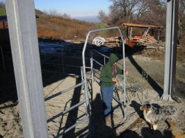 Sacha mentre finisce di montare i fence