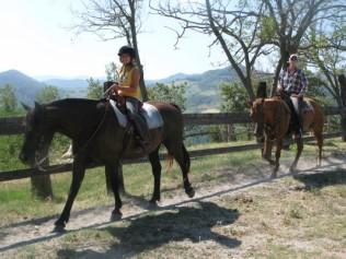 Cavalli e paesaggio: grande!
