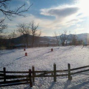 Prima mattina di neve e sole (grazie Saverio)