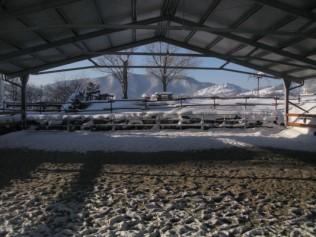 La neve si è intrufolata anche nel maneggio coperto
